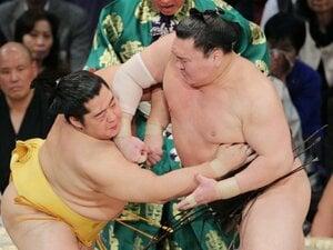 """相撲の起源は「殴る・蹴る・なんでもあり」 国技に見る""""伝統とスポーツ""""はどう共存していくべきなのか?"""
