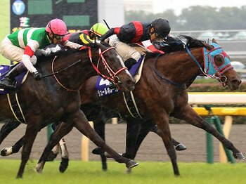 ヴィクトリアマイル制した好騎乗。瞬発力を引き出した幸のコース取り。<Number Web> photograph by Yuji Takahashi