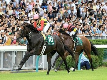 【血統評論家栗山求の勝負目線】荒れ馬場のキーンランドCで狙える馬<Number Web>