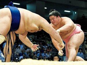 相撲界の門を次々に叩く、有望な学生出身力士たち。~豊ノ島「小柳の実力はすでに幕内クラス」~