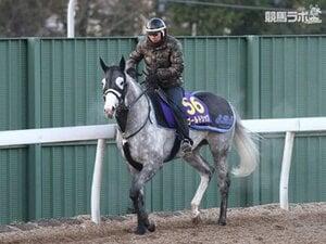 【競馬ラボ】有馬記念では主役として古馬に挑むゴールドシップ