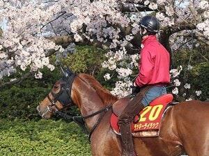 桜花賞にかかる「61年ぶりの偉業」。無敗+2歳女王のライラック出陣。